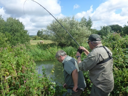 Kennet action